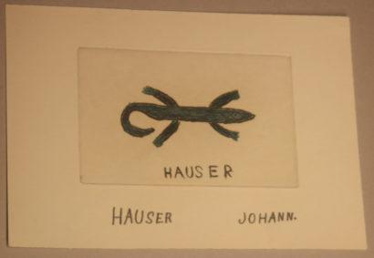 Johann Hauser-Gugging
